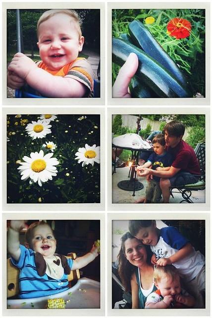 Summer Family Favorites 3