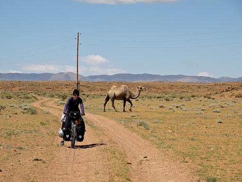Proper desert adventure