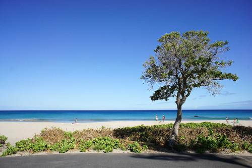ハプナビーチ その2