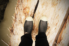Natives (rhyscartwright) Tags: feet shoes legs native natives nativefootwear