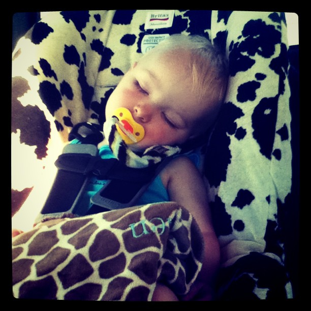 Having a nap on the way to the lake