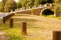 Un puente (Os Tartarouchos) Tags: bridge puente spain treasure galicia lugo 50mm18 tesoros lvm rorato gettyimagesiberiaq3 gettyiberiasummer