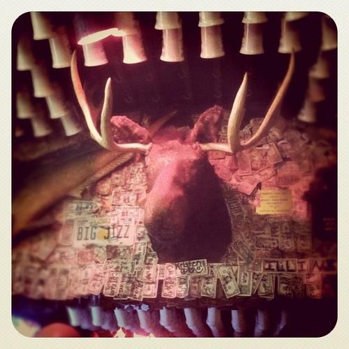 mcguires moose