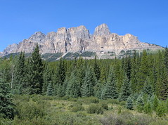 Castle Mountain, Banff NP, Canada (Pixmac_at) Tags: wood trees summer sun canada mountains nature sunshine weather forest landscapes daylight rocks seasons horizon bluesky nobody hills vegetation daytime summertime np nationalparks naturalworld castlemountain exteriors mountainpeaks summits utdoors tipofthehills filebanffnp