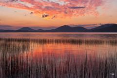 Sunrise on the lake (doveoggi) Tags: lake ny clouds sunrise upstate newyorkstate piseco 8497 the4elements bestcapturesaoi photocontesttnc11