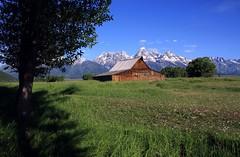 Moulton Barn Landsape (PelicanPete) Tags: summer vacation mountains west nature beauty barn unitedstates scenic jackson wyoming grandtetons jacksonhole moultonbarn mormonbarn mormonrowroad grovontwyoming barnnumbertwo