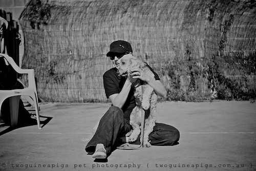 Amy + The Bud by twoguineapigs pet photography