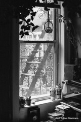 Window (Rafakoy) Tags: city newyorkcity light people urban newyork film window 35mm print 50mm book stair noho natural manhattan f100 books negative ilfordxp2 c41 afnikkor50mmf14d ilfordxp2plus400 epsonv600 epsonperfectionv600