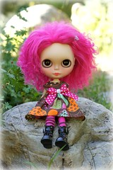 Kimber in the Rock Garden