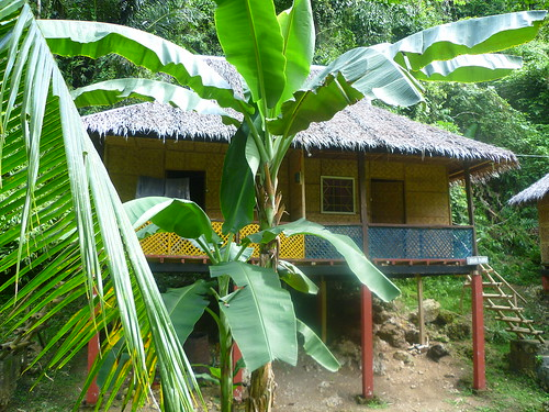 One of the huts at Nuts Huts