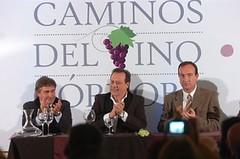 Córdoba: Se presentaron los Caminos del Vino de la provincia