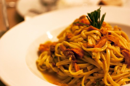 sea urchin pasta @ red bicycle