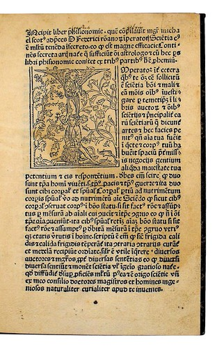 Woodcut initial in Michael Scotus: Liber physiognomiae
