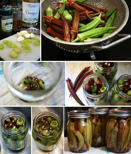 Photo 6- okra-pickled
