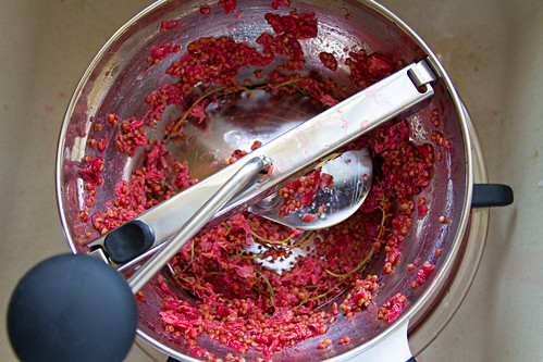 Red Currant Jelly - 2