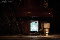 Night walk (Oliver Totzke) Tags: night toy outside nikon geocaching outdoor d2x 85mm days 365 nikkor f18 geo caching danbo revoltech danboard