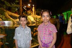 The Dubai Mall (AlBargan) Tags: mall lumix zoo aquarium dubai underwater panasonic khalifa burj     lx3 dmclx3