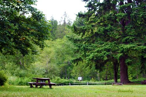 Lake Rosiger park