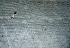 (Damián G.) Tags: barcelona street city urban girl lines june grey gris calle dress 21 g infinity away ciudad run niña end urbana urbano catalunya fin infinito junio far barrio lejos cataluña vestido cuadros correr lineas acera damián 2011 escapar imagenotfound