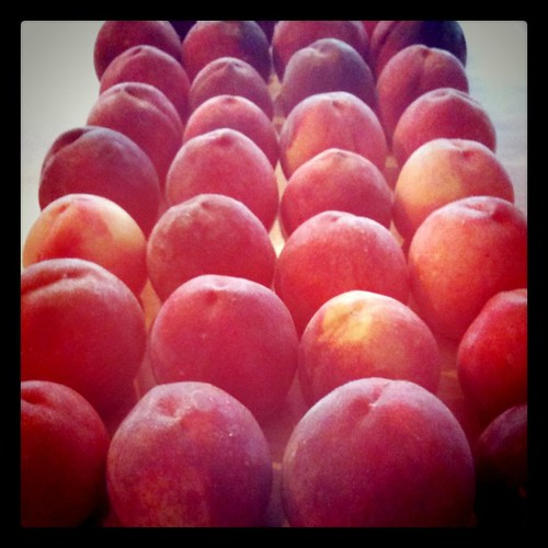 Kentucky peaches from Hinton's Orchard.
