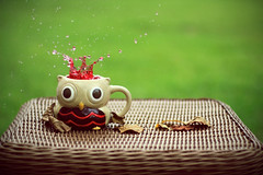 BRAIN OVERLOAD! (Vanz Photography / Designs) Tags: red motion cup water field canon 50mm droplets leaf blood focus dof f14 drop stop owl mug splash depth 550d