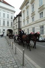 Vienna taxi