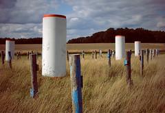 trange jardin (_wysiwyg_) Tags: field countryside columns pillars campagne nordpasdecalais champ colonnes thedailyshoot