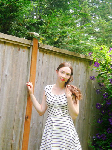 striped dress fence