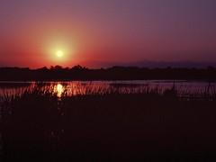Sunset at the delta (dkilim) Tags: river nikon fuji slide delta greece velvia macedonia thessaloniki fm2  kalochori      gallikos