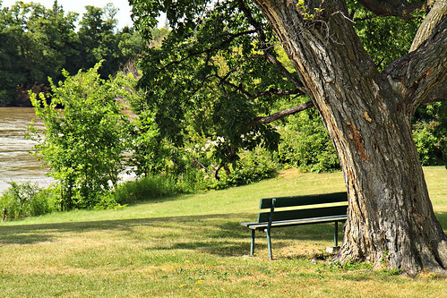 Riverside Bench