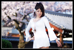 Sakura Asuka / 尼崎・寺町、中川飛鳥 (Ilko Allexandroff / イルコ・光の魔術師) Tags: park light portrait people woman white black slr art girl beautiful fashion japan umbrella canon dark hair asian temple photography google interesting glamour women natural emotion bokeh good feminine awesome flash explore more most kobe portraiture 大阪 mostinteresting 桜 ambient sakura osaka accessories dslr addict asuka 公園 関西 人 ポートレート お寺 写真 nakagawa naniwa 尼崎 ilko asianbeauty 50d キャノン なにわ strobist canon50d 関西学院 関西学院大学 beautyshoots allexandroff イルコ グラマー 中川飛鳥