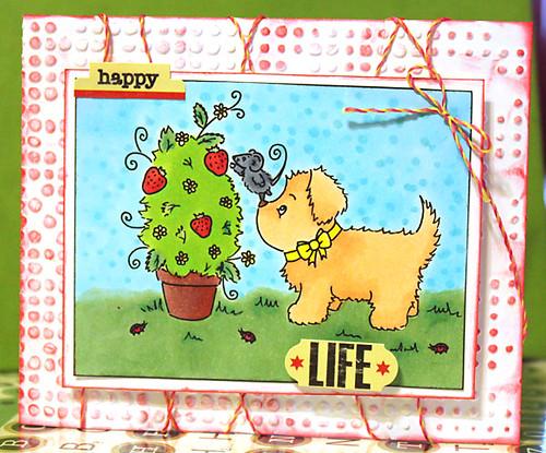 LRC_Card_HappyLife