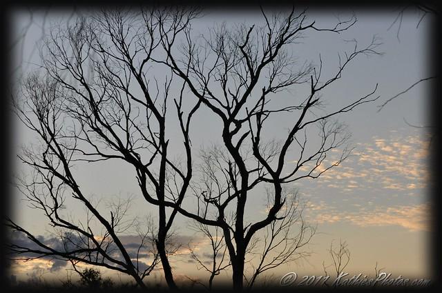 The dawn is breaking