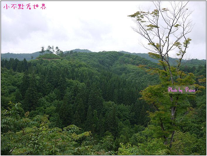 大森町生態農場DIY-31.jpg