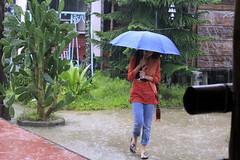 Monsoon Girl (Dr. Zubair) Tags: girl rain umbrella freedom monsoon