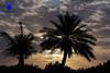 almamzar - Dubai (Malaz A.R) Tags: creativephotographers malaz malazphotography malazabdulrahman