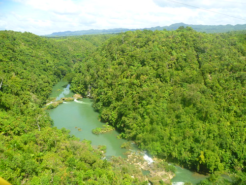 Loboc River view from the top
