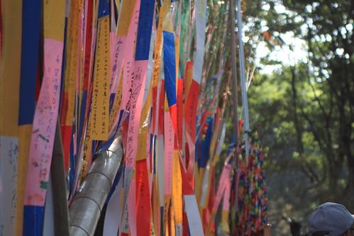 七夕祭り2011 15