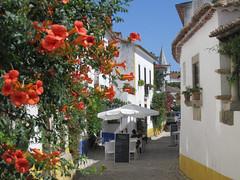 "Óbidos, ""rua Josefa d'Óbidos"" (Valerio_D) Tags: portugal 1001nights óbidos portogallo estremadura ilustrarportugal sérieouro serieouro nikonflickraward leuropepittoresque 1001nightsmagiccity 2011estate"
