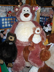 Big Alfie (Spanky_bear) Tags: bear fun stuffed friend teddy bears teddybear stuffedanimal huge gund stuffedbear gottagettagund