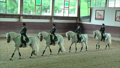 "Lipizzaner Dressage <a style=""margin-left:10px; font-size:0.8em;"" href=""http://www.flickr.com/photos/64637277@N07/5890341047/"" target=""_blank"">@flickr</a>"