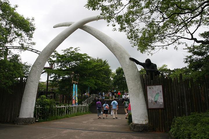 六福村動物園008