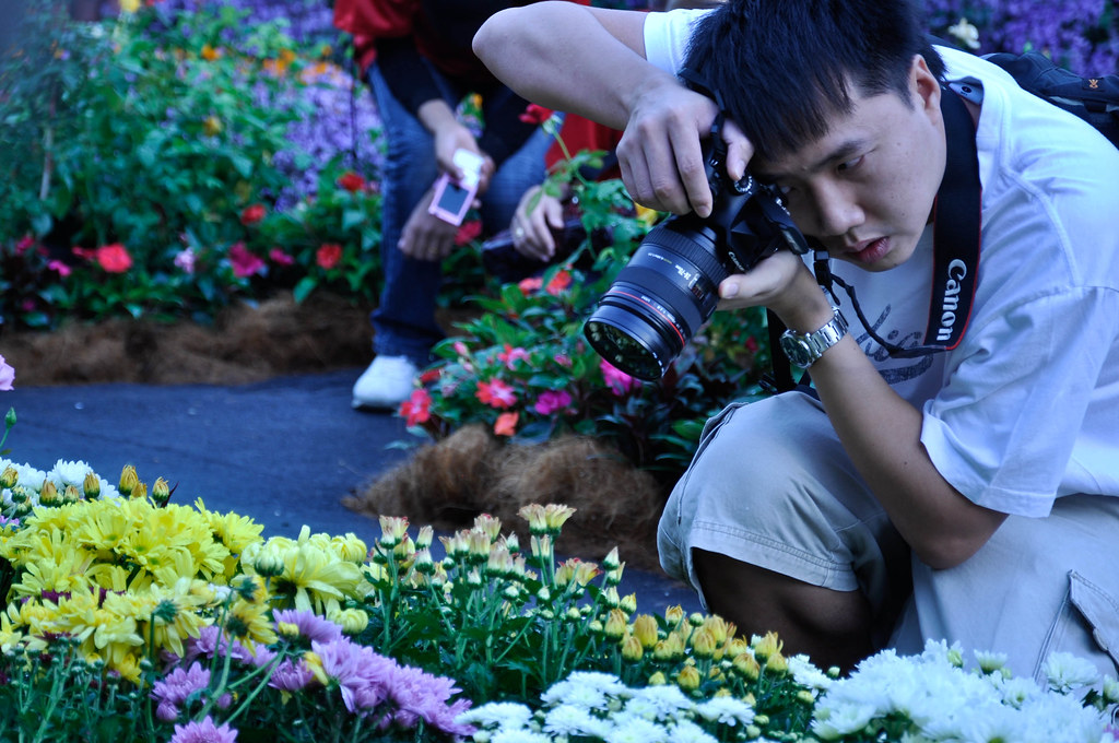 Flower lover 爱花之人 ...