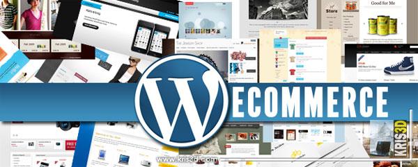 Comment médiatiser votre boutique E-commerce réalisée sous WordPress ?