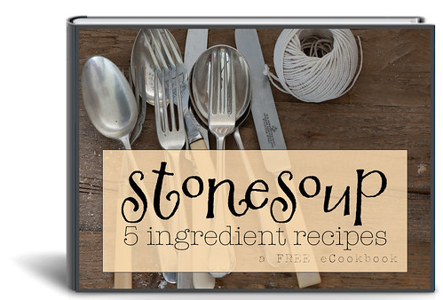 Stonesoup 5ingredients FREE 3D Cover