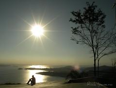 O Sol - Rio de Janeiro - Brasil (.**rickipanema**.) Tags: pordosol sol rio brasil contraluz nikon janeiro rick niteroi parquedacidade fimdetarde ponterioniteroi rickipanema rioejaneiro brasil2014 nikoncoolpixp80 coolpixp80 rio2016 ringexcellence