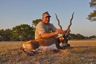 2011 Blackbuck