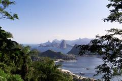 Isn't Wonderful? (Leonardo Martins) Tags: brazil green brasil riodejaneiro wonderful lumix bresil brasilien panasonic tropical g2 through durch niterói citypark brésil parquedacidade sudeste através regiãosudeste