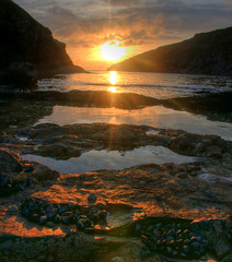 Port Quin, Cornwall (mike.421) Tags: sunset port cornwall shellfish quin mussells
