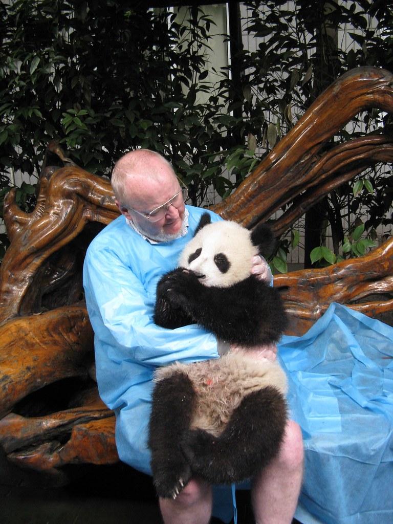 2005 Panda & me